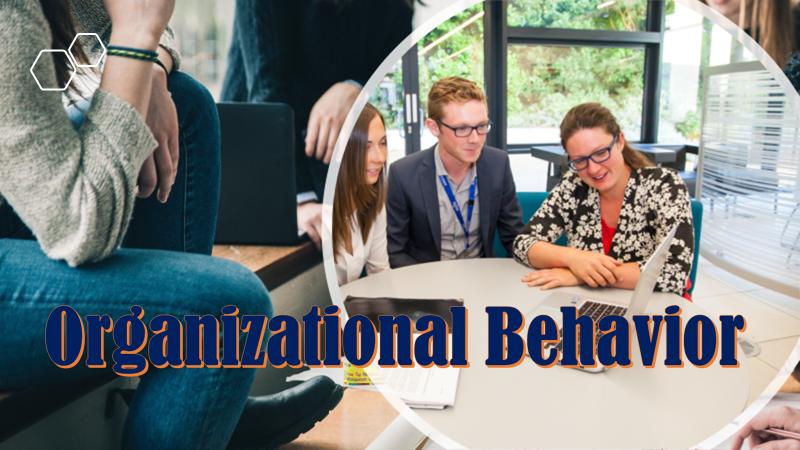 OrganizationalBehavior