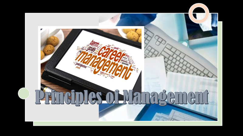 PrinciplesofManagement